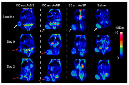 The images show PET scans of a mouse with a large tumor (by the white arrow).