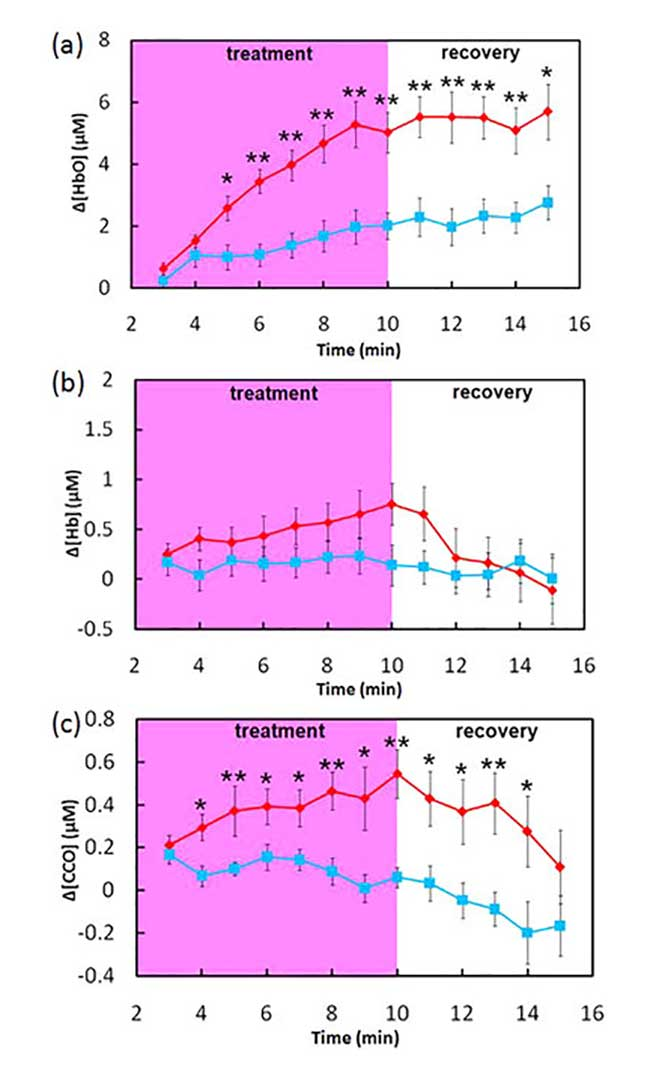 LLLT (red)/placebo (blue)-induced concentration changes of (a) [HbO], (b) [Hb], and (c) [CCO] in human forearms in vivo (mean?±?SE, n?=?11).
