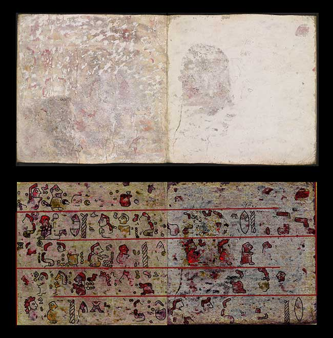 Pages 10 and 11 of the back of Codex Selden.