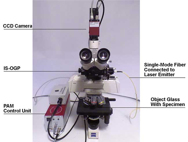 The microscope arrangement used by Johannes Goessling and co-researchers in their photosynthesis studies.