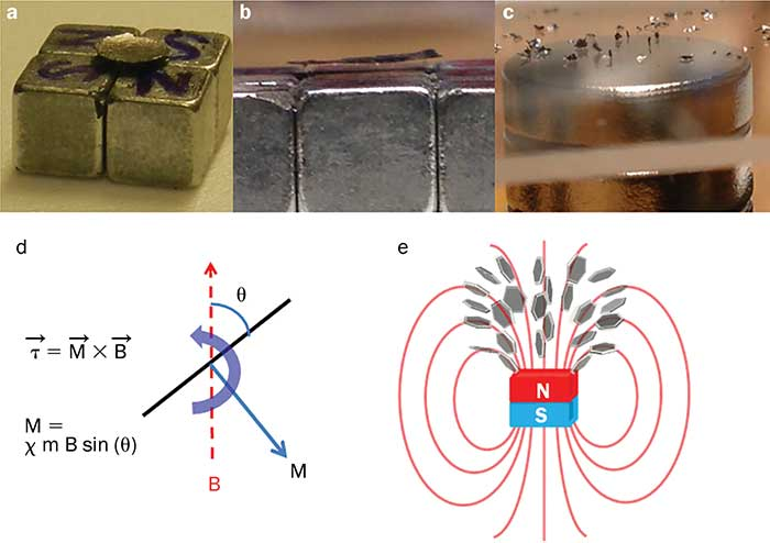 Levitation and rotation of graphite or graphene flakes by magnetic field.