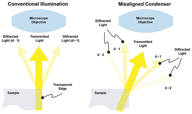With conventional illumination, positive and negative diffracted sidebands are detected almost equally and their 180º phase difference cancels their amplitude.