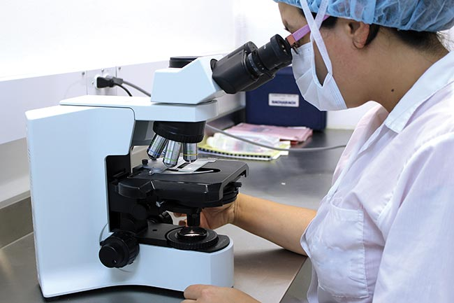 Imaging techniques, such as those used in microscopy, and tools including optical microscopes are becoming increasingly popular in biomedical R&D and the life sciences.