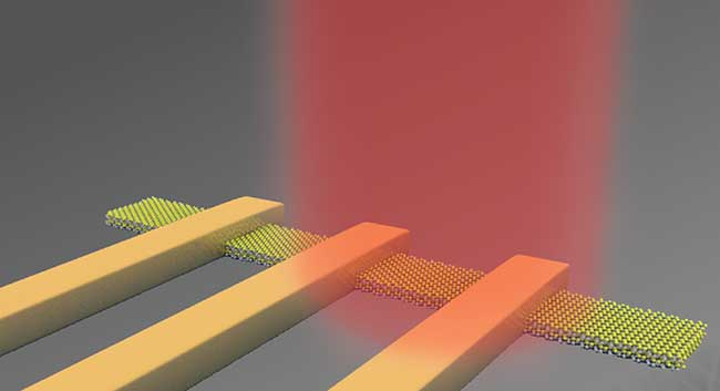 A phototransistor made up of a 2D material.