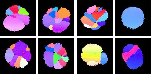 The eight images show eight different nanoparticles of the same substance, palladium. Each nanoparticle consists of a number of grains, which are displayed as different colored fields on the images.
