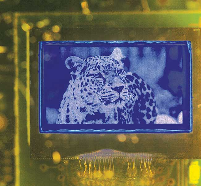 Image obtained on a blue active-matrix WVGA (wide video graphics array) microdisplay.