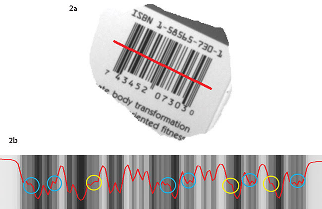 A barcode imaged at a lower resolution (1.2 PPM) enables a wider field of view (a). Bilinear interpolation has been unable to resolve some of the barcode's finer features (b).