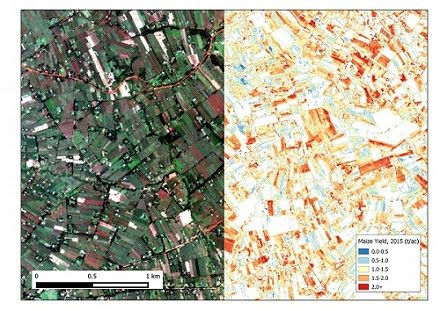 Image of maize farm plots in Western Kenya and an agricultural yield map.