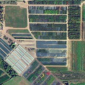 Agricultural landscape imaged by WorldView-3 satellite.