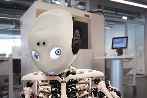 The Roboy robot.