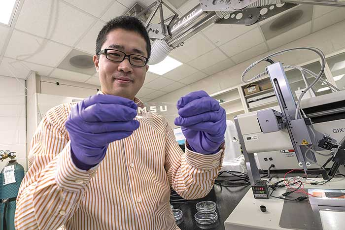 Chuan Wang, a Michigan State University engineering researcher, displays the stretchable electronic material he and colleagues developed in his lab.