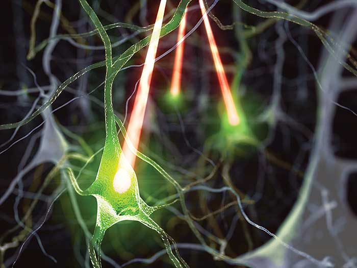 In all-optical physiology studies, lasers stimulate neurons and map activity in connected neurons via fluorescent probes such as genetically modified calcium indicators.