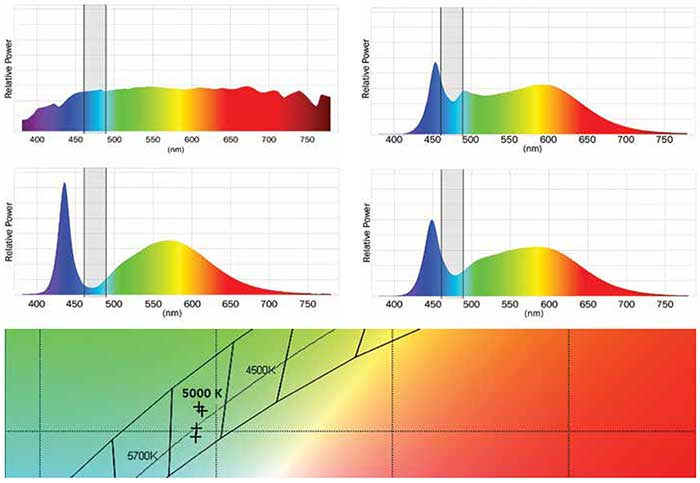Different spectra for a CCT of 5000 K with very different energy between 460 and 490 nm (scaled for equal illuminance).
