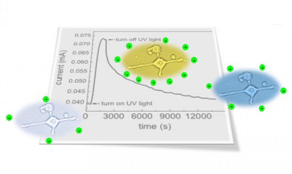 Persistent photoconductivity, North Carolina State University.