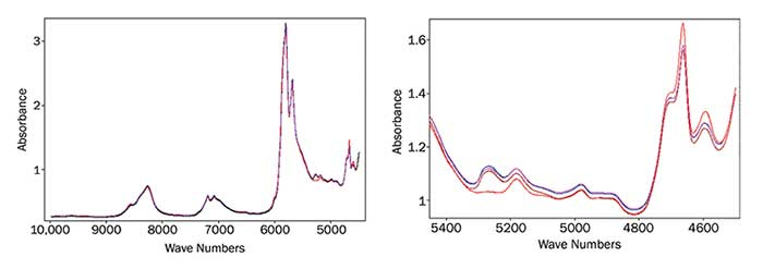 Near-infrared transmission spectra of olive oils