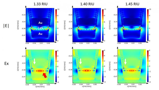Plasmonic sensor for detecting cancer biomarkers, University of Illinois at Urbana-Champaign
