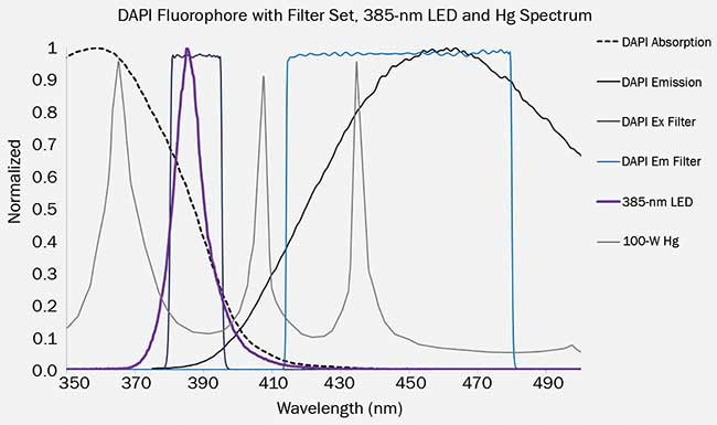 This graph shows a 385-nm LED and Hg spectrum overlaid on DAPI absorption and emission, with an example excitation and emission filter.