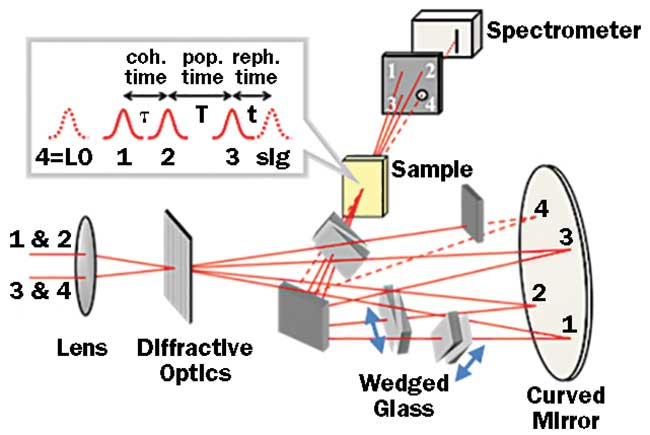 In the Fleming group's 2D electronic spectroscopy setup, the time delay between different broadband pulses can be independently varied.