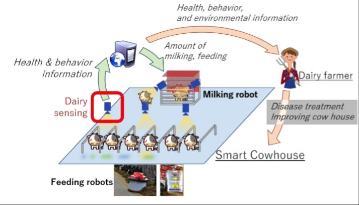 Smart cowhouse using imaging and AI to monitor hoof health, Osaka University.