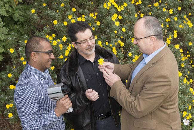 Dr. Jair Garcia, Professor Marcello Rosa and Associate Professor Adrian Dyer. Courtesy of Monash University.