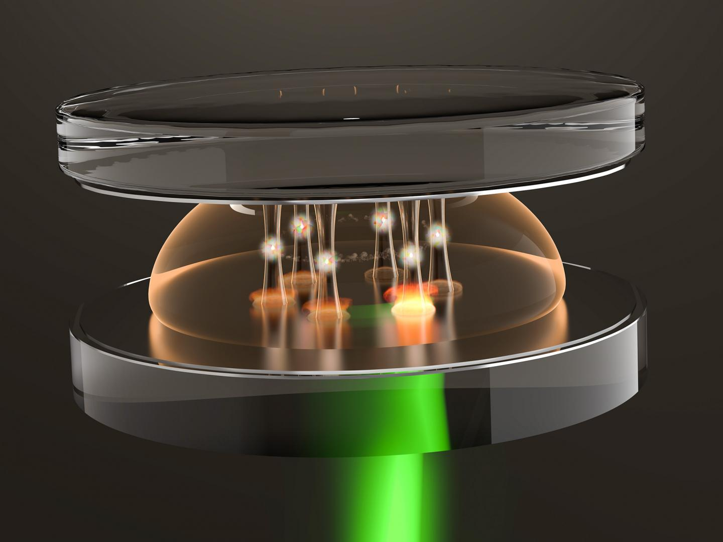 Optical wells created for super-photons, University of Bonn.