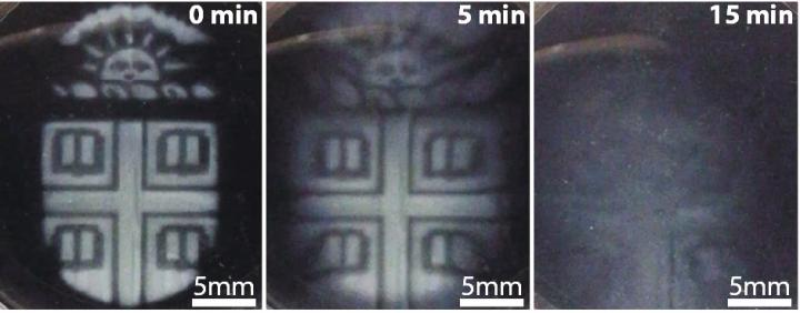 Brown University researchers develop 3D printed biomaterials that degrade on demand.