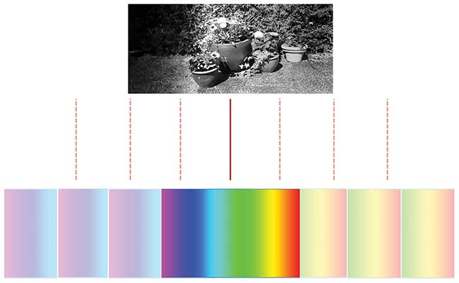 Relative movement between the camera and object enables 3D hyperspectral imaging.