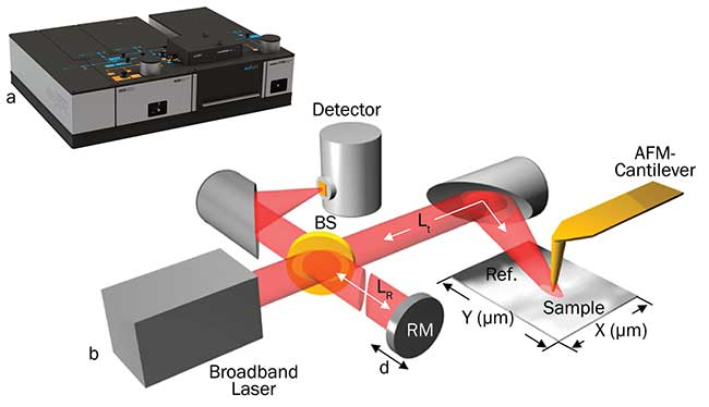 neaSNOM near-field optical microscope system configured for nano-FTIR spectroscopy