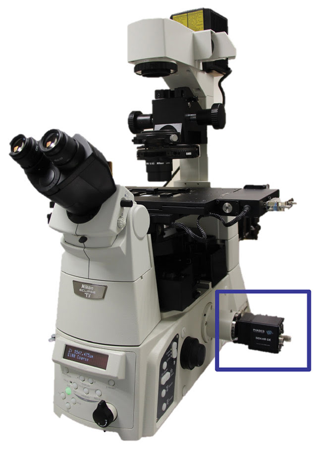 Figure 1. The Phasics SID4Bio quantitative phase imaging (QPI) device plugged into the video port of a microscope. No additional optical setup is needed, and it is compatible with classical microscope workflow and environment. Courtesy of Phasics Corp.