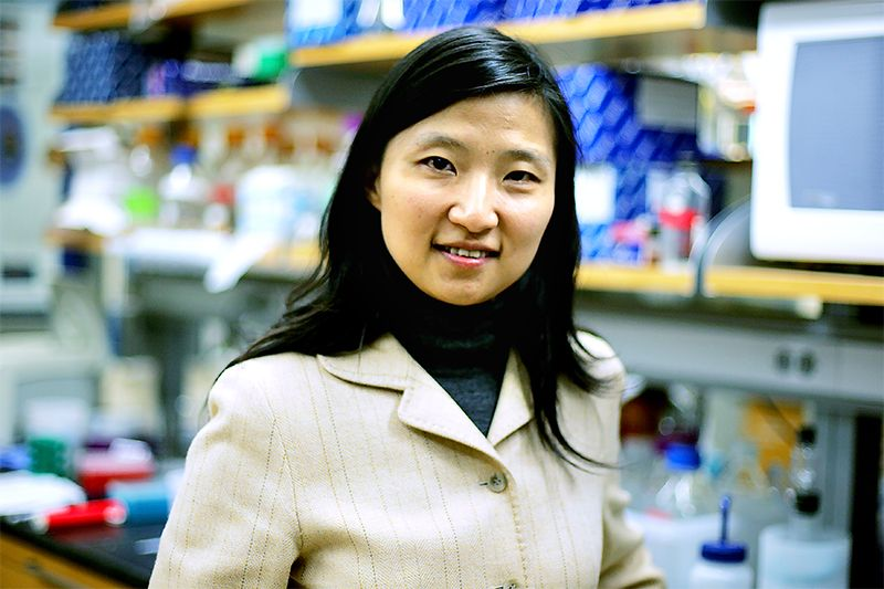 Xiaowei Zhuang has won a US$3-million Breakthrough prize in life sciences for her work on microscopy. Courtesy of Cheryl Senter/HHMI.