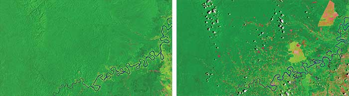 Deforestation in Peru, imaged with remote sensing.