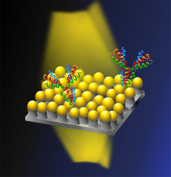 Nanomushrooms comprise plasmonic sensor, OIST.