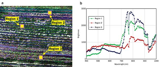 Hyperspectral Machine Vision Enables Smart Automation