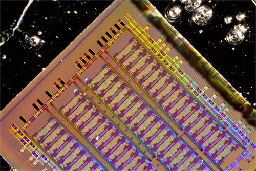 The bulk silicon electronic-photonic chip designed by the MIT, UC Berkeley and Boston University team. Courtesy of Amir Atabaki.