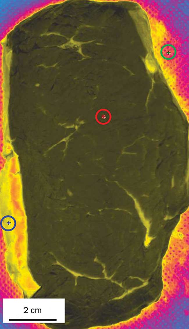 A hyperspectral image of a beef steak.
