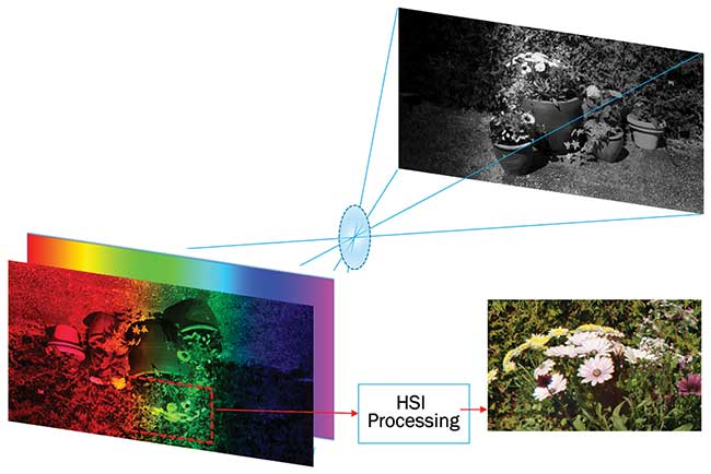 Image acquisition and workflow with a filter-based hyperspectral imaging camera.