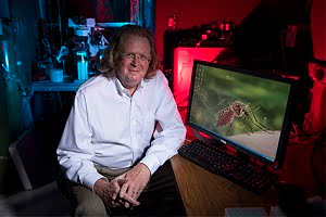 UCI biophysicist Todd C. Holmes' research work builds on his team's recent discovery of two additional ways that insects detect light. Courtesy of Steve Zylius / UCI Strategic Communications.
