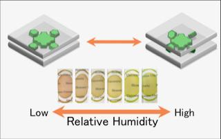Transparent hybrid film changes color in response to relative humidity. Tokyo Metropolitan University.