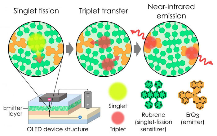 The singlet fission process used to boost the number of excitons in an OLED and break the 100 percent limit for exciton production efficiency. Kyushu University, OPERA.