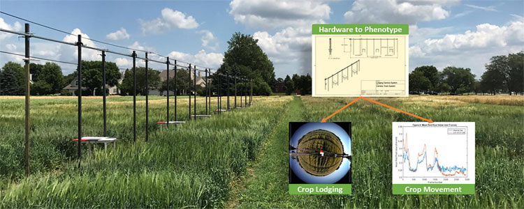 Constructed field imaging system from University of Minnesota.