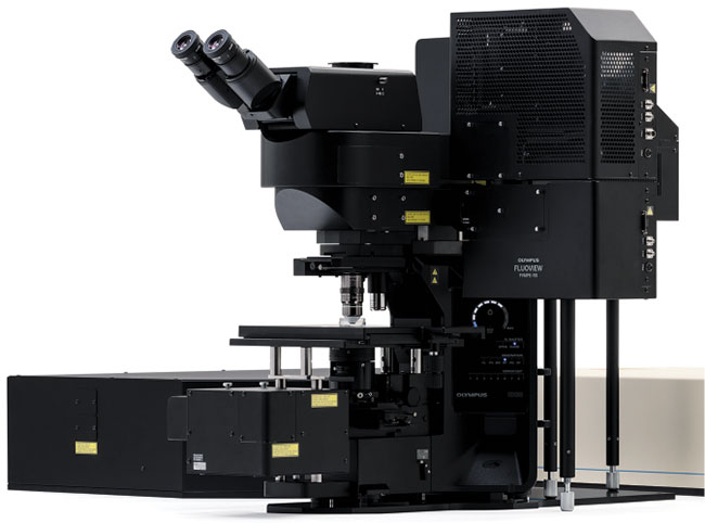 The Olympus FLUOVIEW FVMPE-RS multiphoton microscope is a turnkey solution for nonlinear imaging applications such as TPEF and SHG.