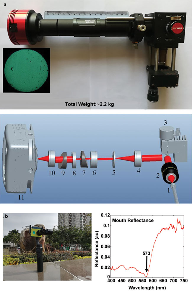 Fuhong Cai's (Hainan University) spectrometer can be used as a medical endoscope (a), and potentially for oxygenation and perfusion monitoring of the human face (b).