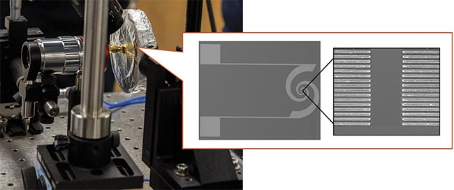 Figure 5. A photograph and electron microscope image of the terahertz detector developed by Mona Jarrahi's team at UCLA. Courtesy of Mona Jarrahi/UCLA.