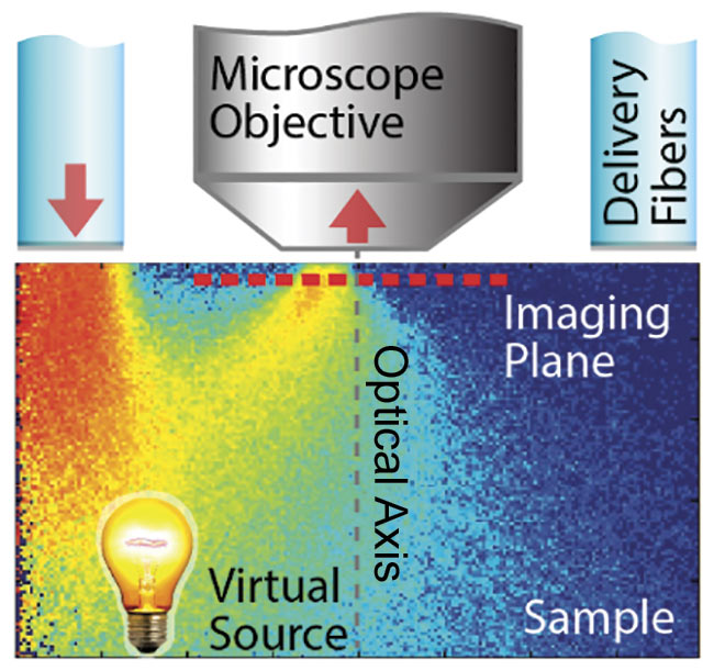 Figure 1. Epi-illumination for quantitative phase contrast with qOBM. A schematic of light delivered through optical fibers, illuminating the imaging plane through multiple scattering. This creates a virtual transmission geometry with an oblique source. Illumination is done sequentially from one or multiple opposing pairs of light sources. Adapted with permission from Reference 10.