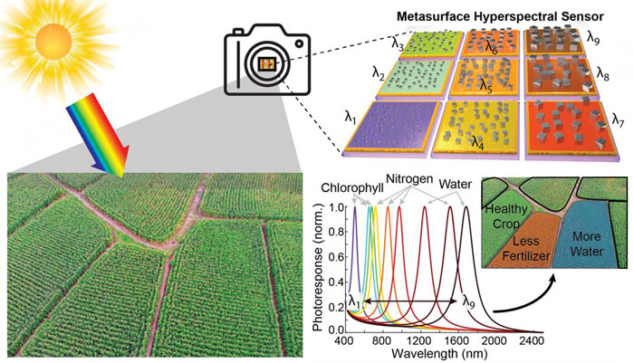A new type of lightweight, inexpensive hyperspectral camera could enable precision agriculture. This graphic shows how different pixels can be tuned to specific frequencies of light that indicate the various needs of a crop field. Courtesy of Maiken Mikkelsen and Jon Stewart, Duke University.