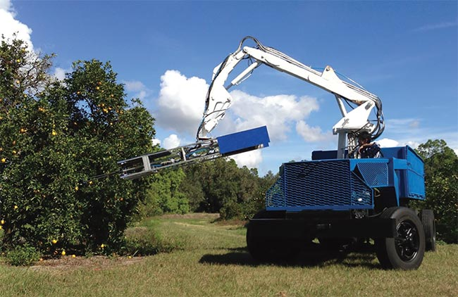 In an outdoor environment, hanging fruit moves readily, and robotic harvesting movements must be based on real-time feedback. In the case shown, cameras are built into the frame moving at the end of the hydraulic arm. Harvesting is an example of visual servoing that cannot rely on tags attached to manipulated objects, such as oranges on a tree. Courtesy of Energid Technologies Corp.