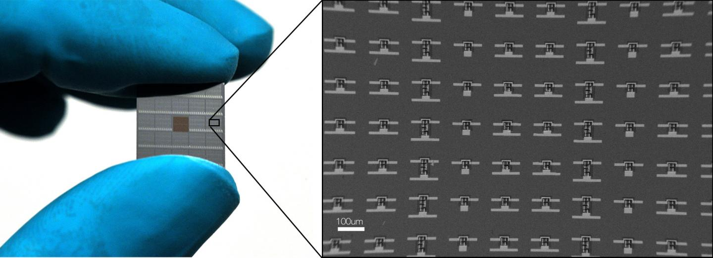 Cell-sized microrobots powered by solar cells, University of Pennsylvania.