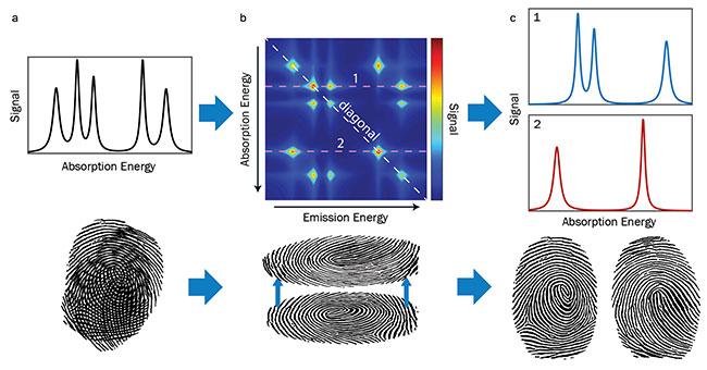 Single-Beam Multidimensional Coherent Spectroscopy