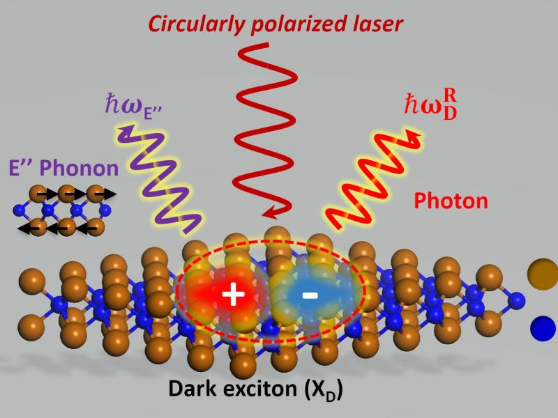 "An RPI team led by Sufei Shi, assistant professor of chemical and biological engineering, figured out how to brighten the ""dark"" exciton; that is, to make the ""dark"" exciton interact with another quasiparticle ( a phonon) to create a completely new quasiparticle that has both properties researchers want — long lifetime and valley spin. Courtesy of Rensselaer Polytechnic Institute."