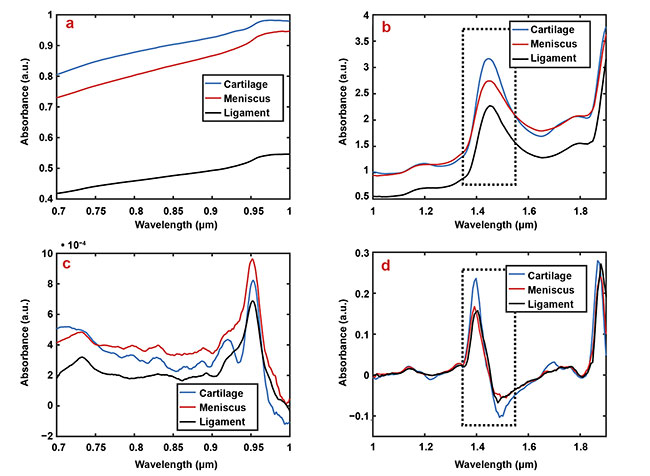 Figure 2. Representative smoothed (a, b) and first derivate (c, d) spectra of articular cartilage (blue), the meniscus (red), and ligaments (black). For example, the relatively higher water content of cartilage compared to other tissues is apparent in subfigures b and d at the wavelength region 1.35 to 1.55 µm (dashed box). Courtesy of Biophysics of Bone and Cartilage/University of Eastern Finland.